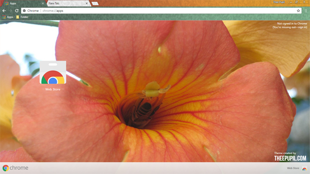 Busy Bee Flower Chrome Theme