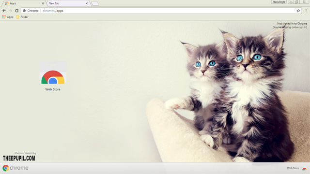 Kittens Google Chrome Theme