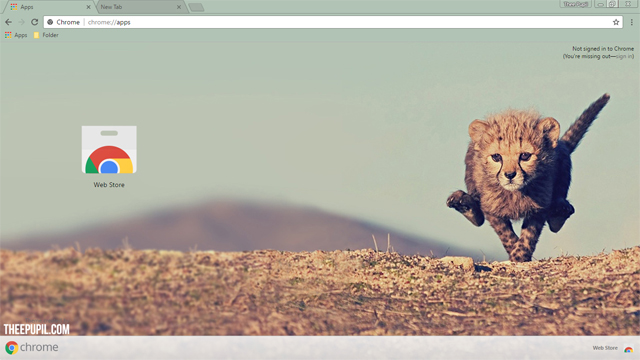 Cheetah Cub Google Chrome Theme