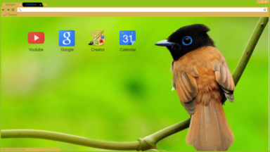 Bird Chrome Theme