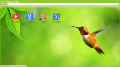 Hummingbird Nature Chrome Theme