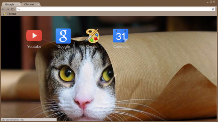 Cat In A Bag Chrome Theme