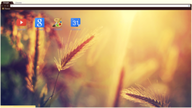 Summer Dream Chrome Theme