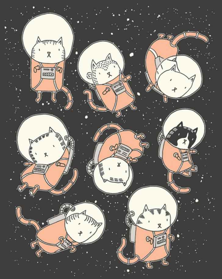 Space Cats Chrome Theme