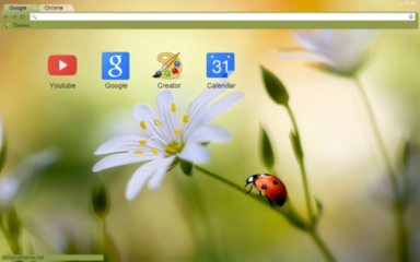 Ladybug On Flower Chrome Theme