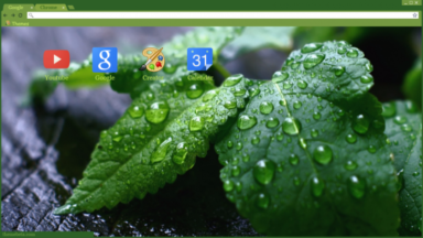 Raindrops On Leaves Chrome Theme