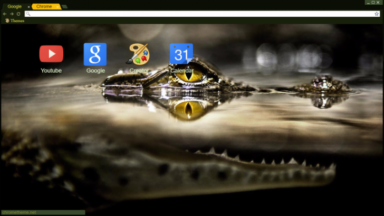 Baby 'Croc Chrome Theme