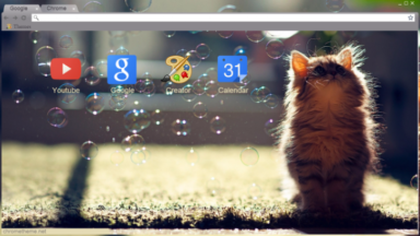 Cat Chrome Theme