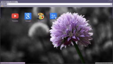 Mauve Flowers And Norway Chrome Theme