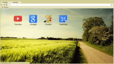 Country Chrome Theme
