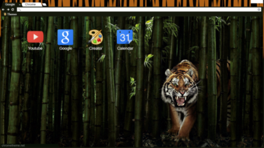 Tiger Bamboo Chrome Theme