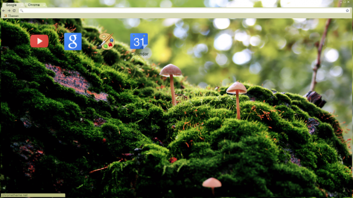 Moss And Mushrooms Chrome Theme