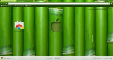Apple Bamboo Chrome Theme