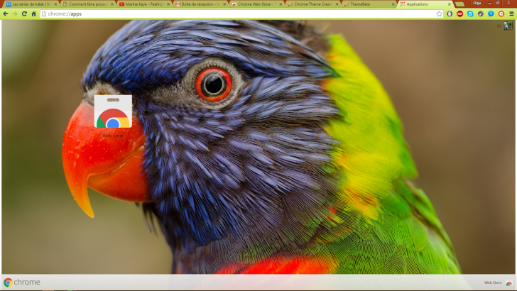 Parrot Chrome Theme