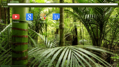 Jungle Chrome Theme